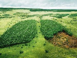 Бизнес идея на экологической экспертизы