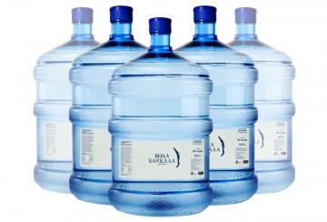 Доставка воды в бутылях 19 литров