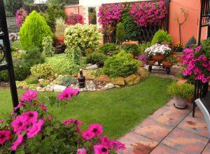Посадка декоративных растений