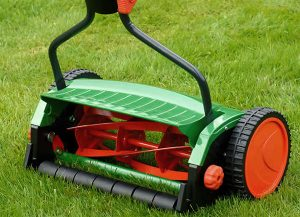 Как выбрать недорогую газонокосилку